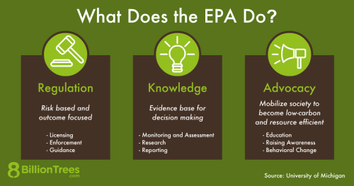 An 8 Billion Trees graphic showing what the United States Environmental Protection Agency (EPA) does to protect the environment, including regulation, knowledge, and advocacy.