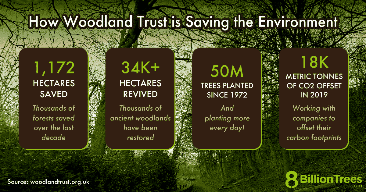 An 8 Billion Trees graphic showing how Woodland Trust is saving the environment in the UK, with a Scotland forest scene in the background and figures presented, showing that the organization has planted 50 million trees since 1972.