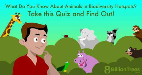 An illustration of a man with various animals that belong in biodiversity hotspots.