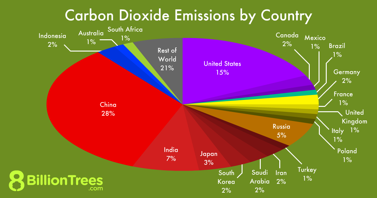 An 8 Billion Trees pie chart showing carbon dioxide emissions by country, with the US, CHina, and India comprising 50% of all global emissions.