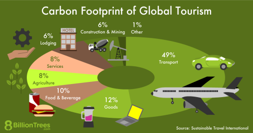 An 8 Billion Trees pie chart showing a breakdown of the CO2 emissions from global tourism, with transportation making up 49% of the carbon footprint.