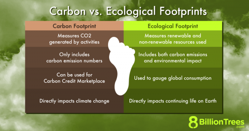 An 8 Billion Trees graphic charting an ecological footprint versus a carbon footprint, with their definitions, how it's measured, and how it's calculated.