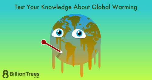 Try out this questions to see what you know about global warming.